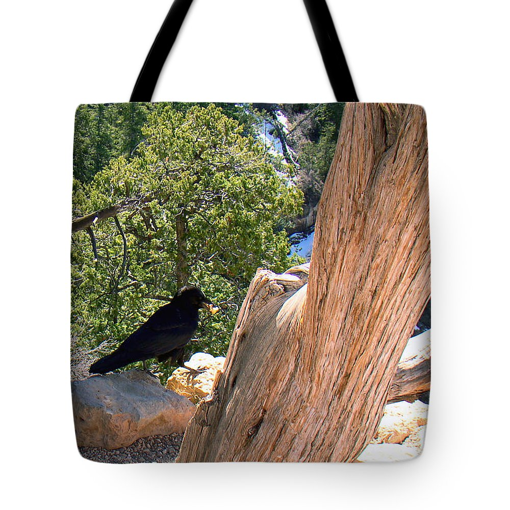 Grand Canyon Tote Bag featuring the photograph Petrified Raven At Grand Canyon by Merja Waters