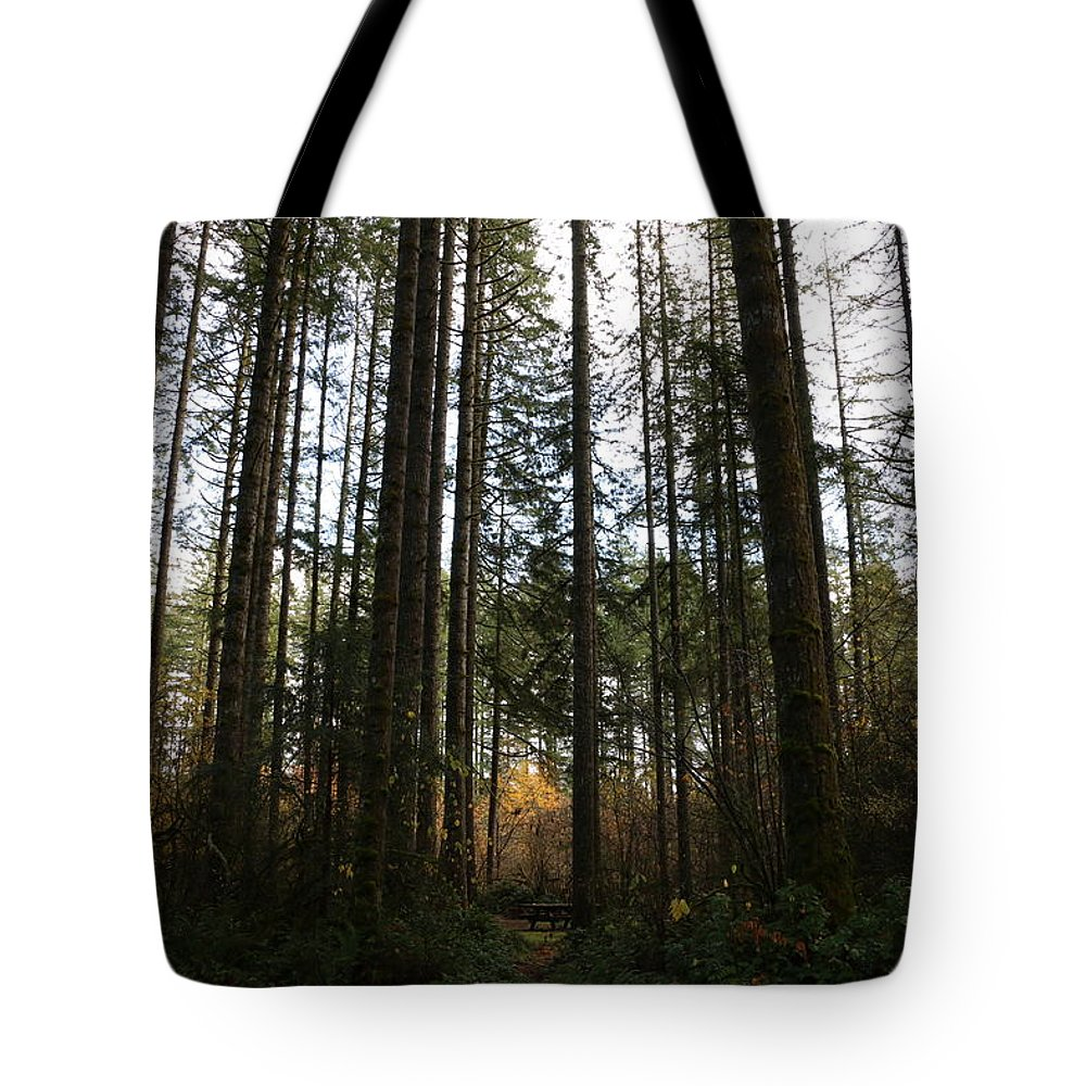 Trees Tote Bag featuring the photograph Picnic In The Afternoon by Dani Keating