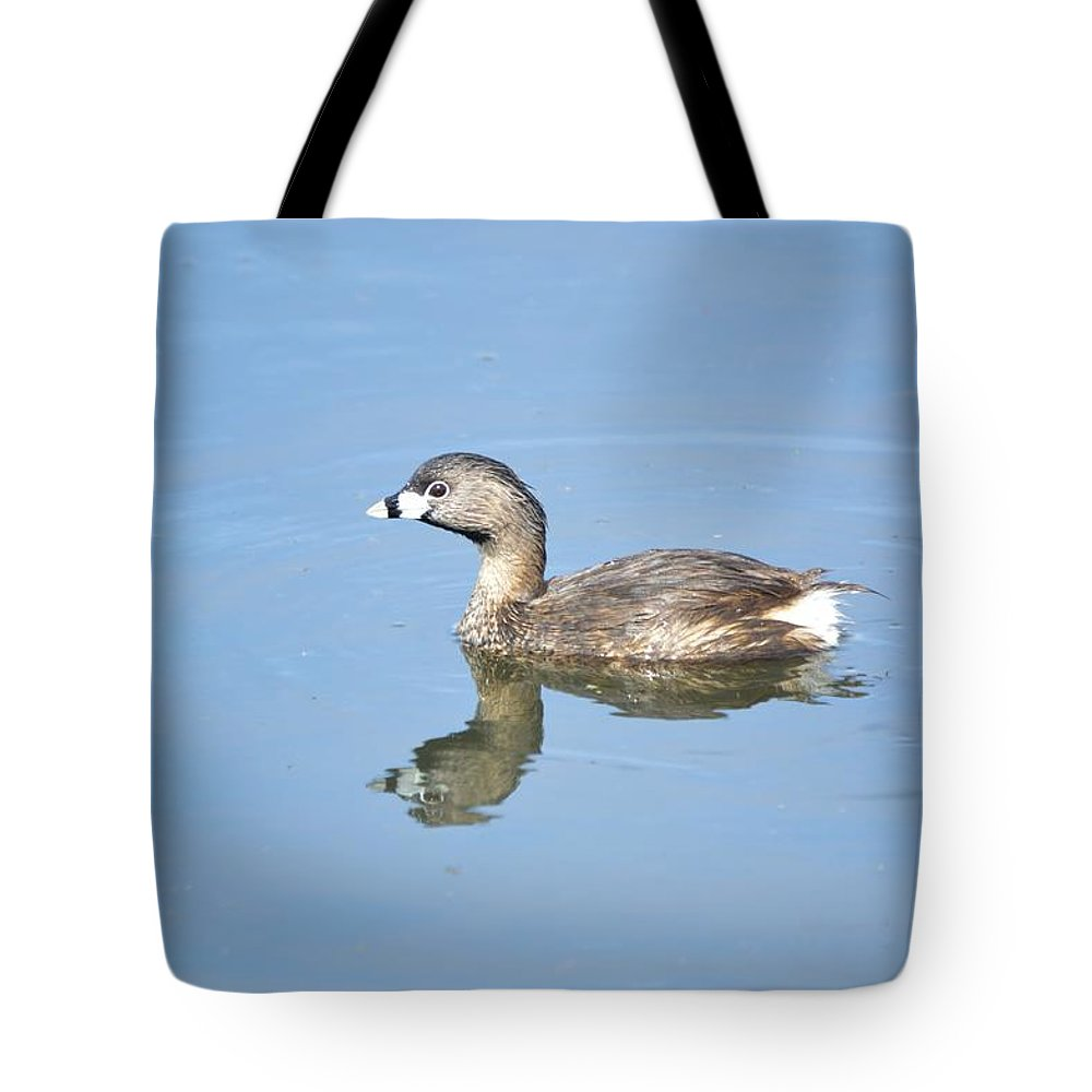 Bird Tote Bag featuring the photograph Pied-billed Grebe 2 by Bonfire Photography