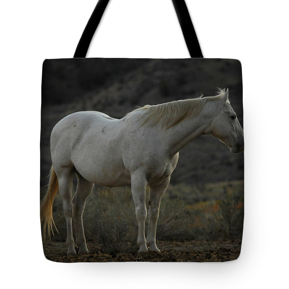 Horse Tote Bag featuring the photograph Pierre by Donna Blackhall