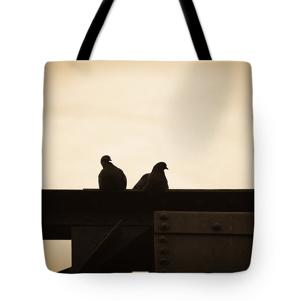 Silhouettes Tote Bag featuring the photograph Pigeon And Steel by Bob Orsillo
