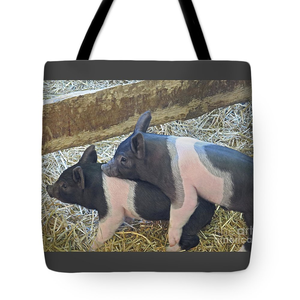 Piggyback; Piglets Tote Bag featuring the photograph Piggyback by Ann Horn