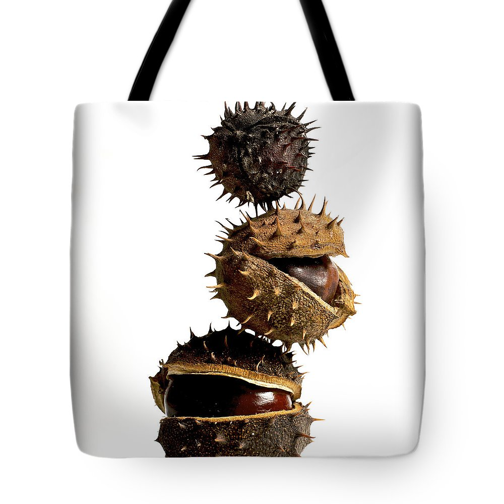 Bogue Tote Bag featuring the photograph Pile Of Chestnuts by Bernard Jaubert