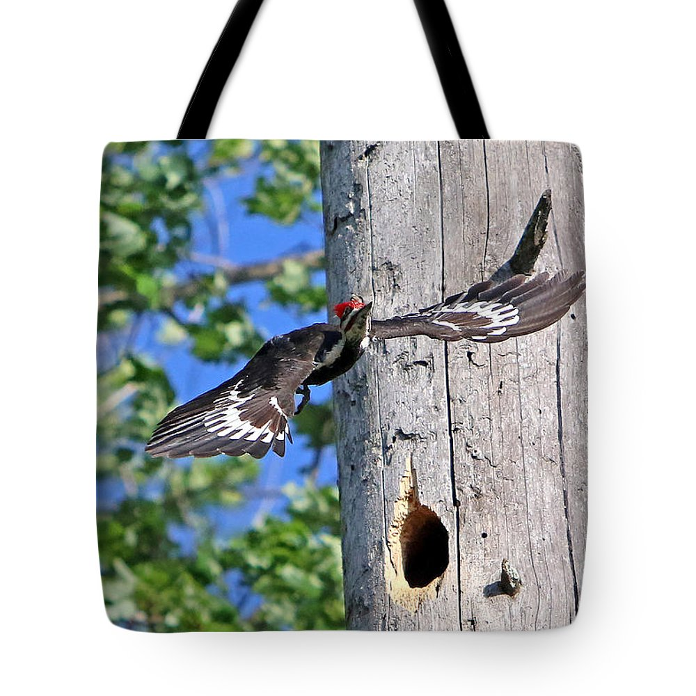 Woodpecker Tote Bag featuring the photograph Pileated #27 by James F Towne