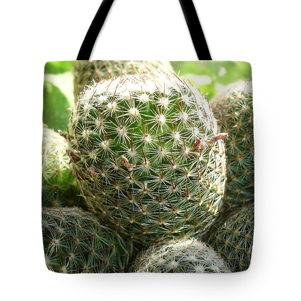 Cactus Tote Bag featuring the photograph Pincushion Cactus by Susan Baker