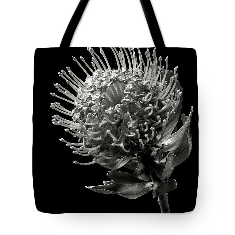 Pincushion Protea In Black And White Tote Bag For Sale By Endre Balogh