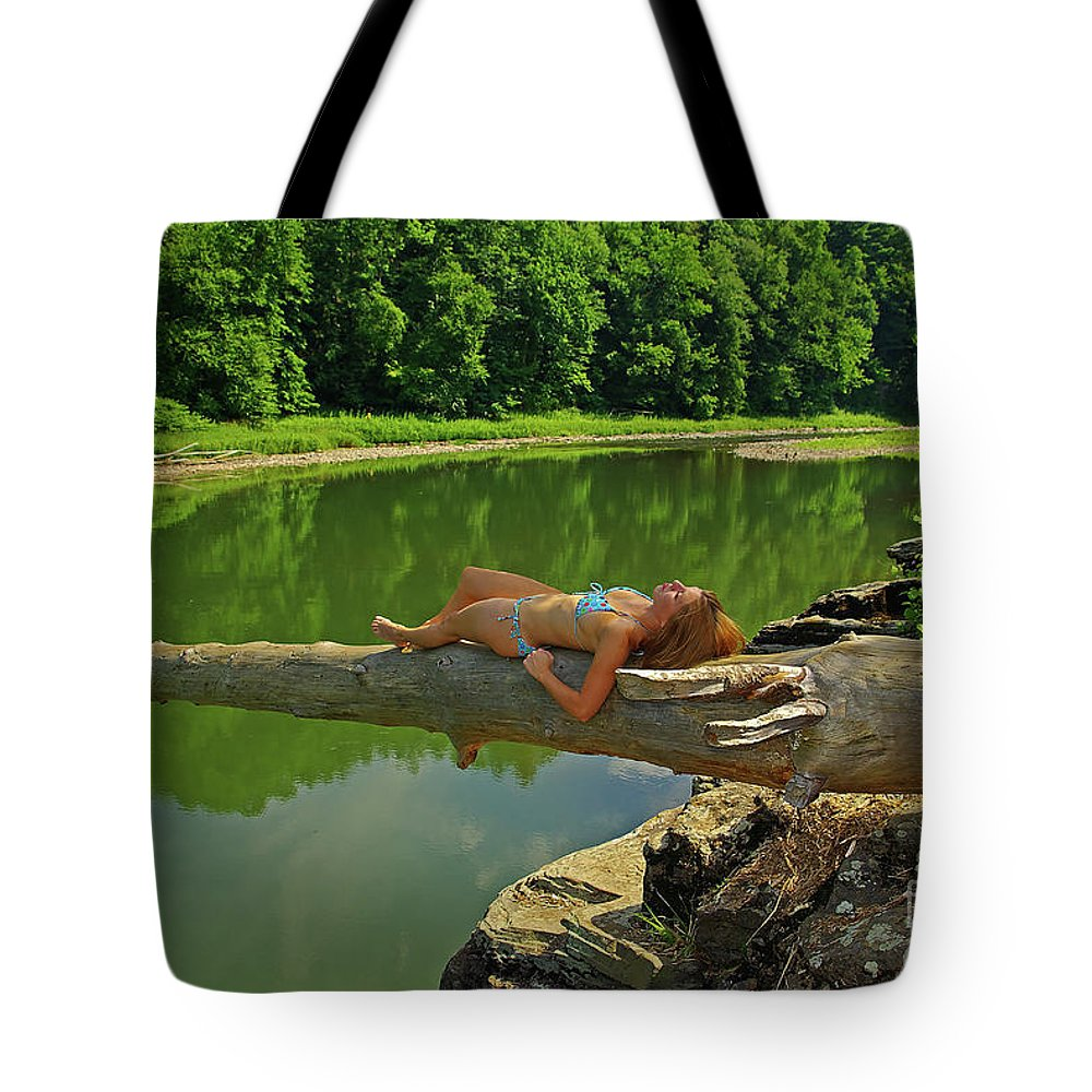 Pennsylvania Tote Bag featuring the photograph Pine Creek Afternoon by Rich Walter