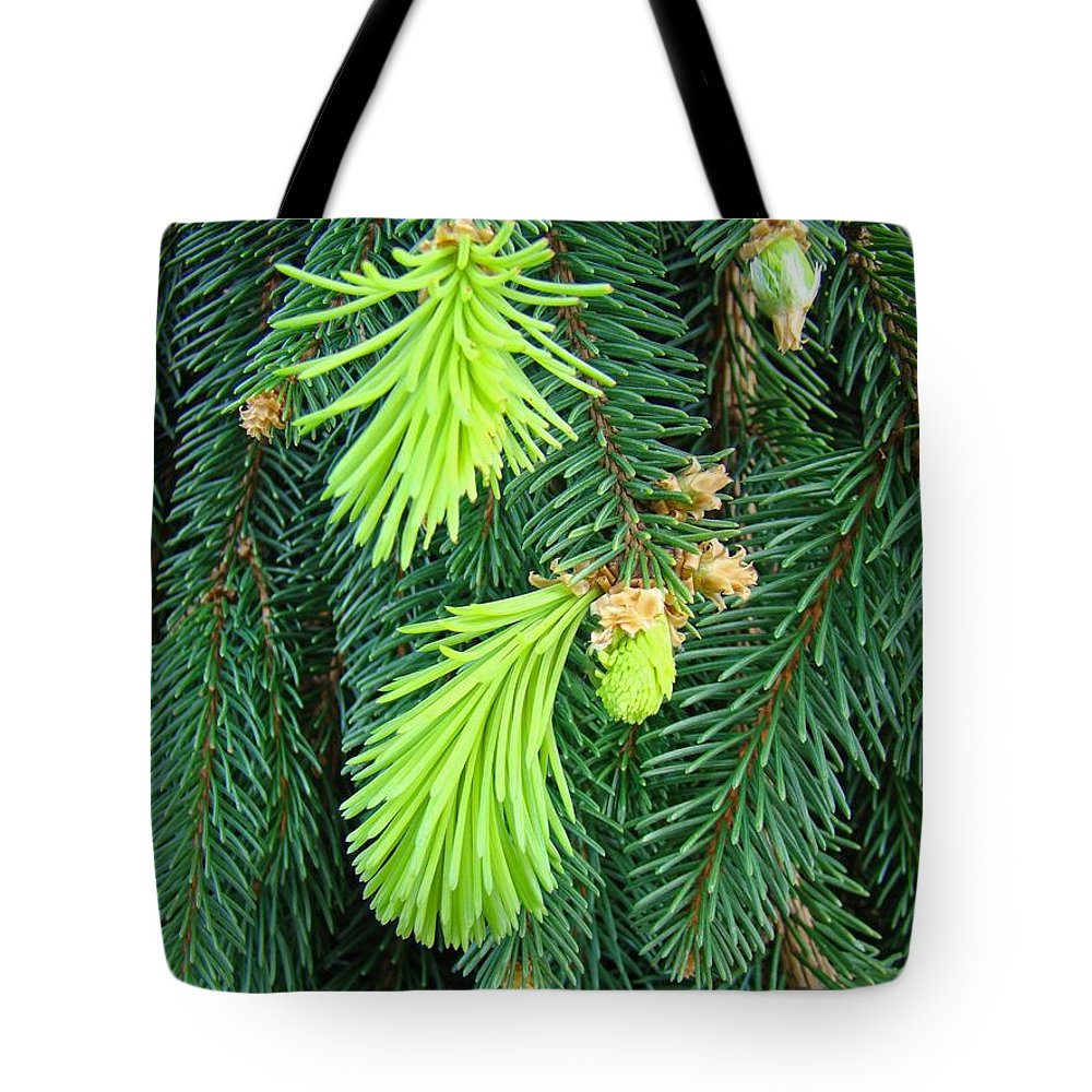Pine Tote Bag featuring the photograph Pine Tree Branches Art Prints Conifer Forest Baslee Troutman by Baslee Troutman