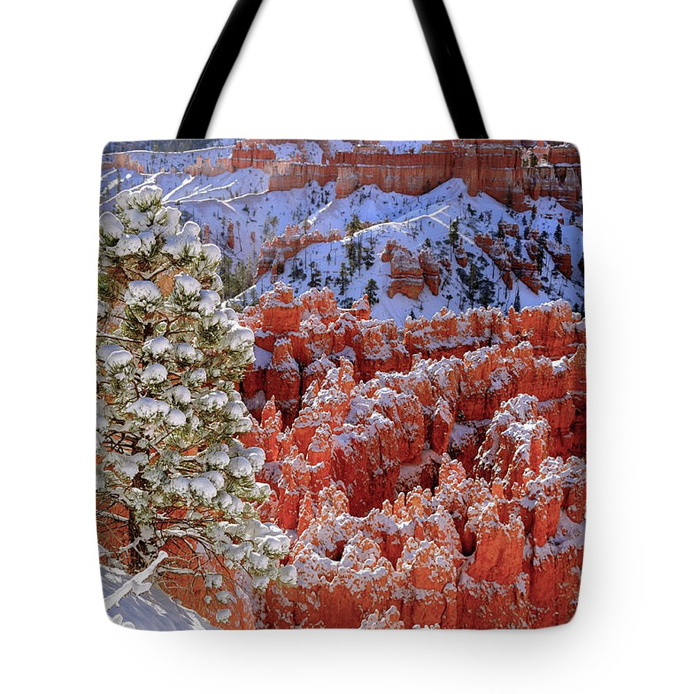 Bryce Canyon Tote Bag featuring the photograph Pine Tree In Bryce Canyon by Jorge Moro