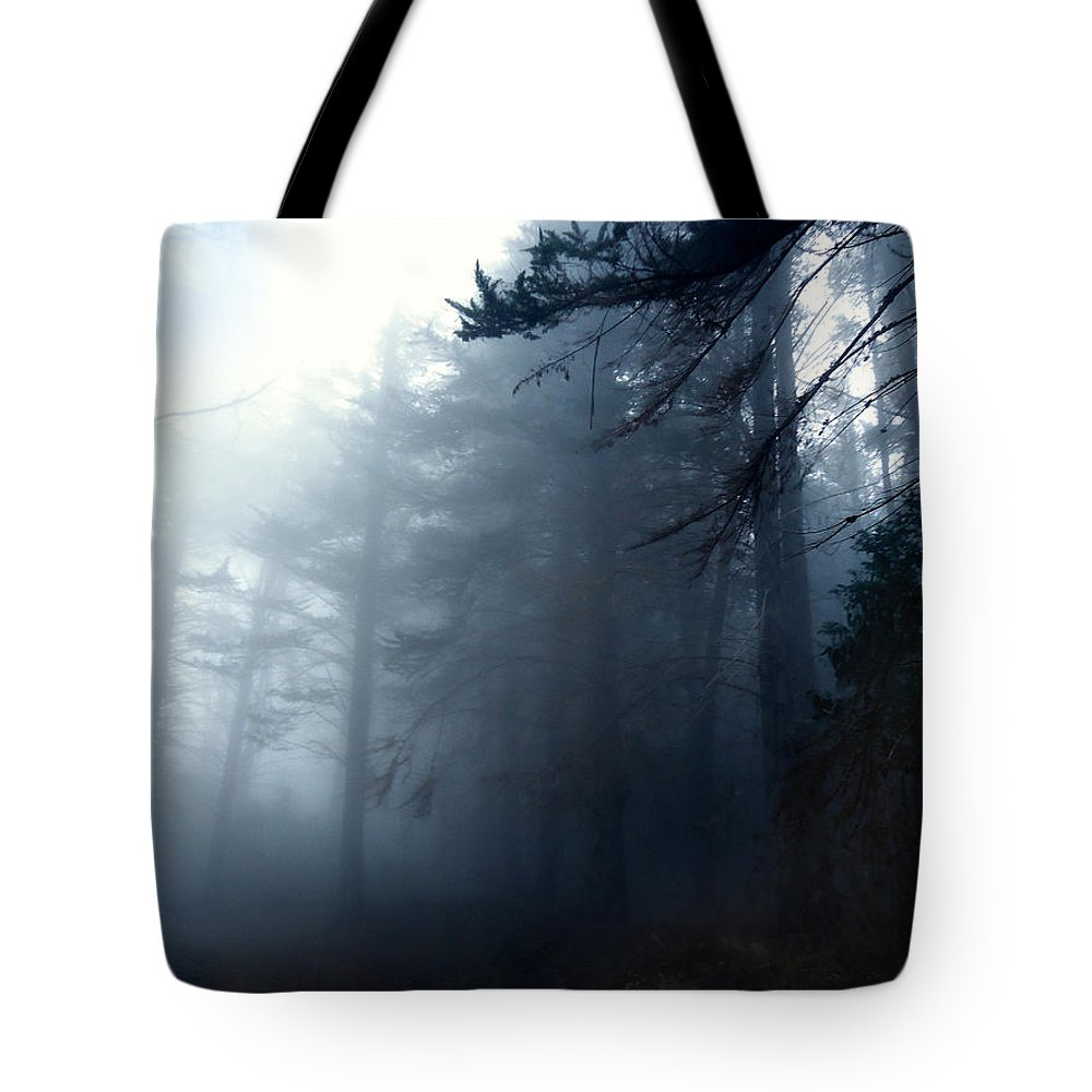 Forest Tote Bag featuring the photograph Pine Trees In Fog by Austin Howlett