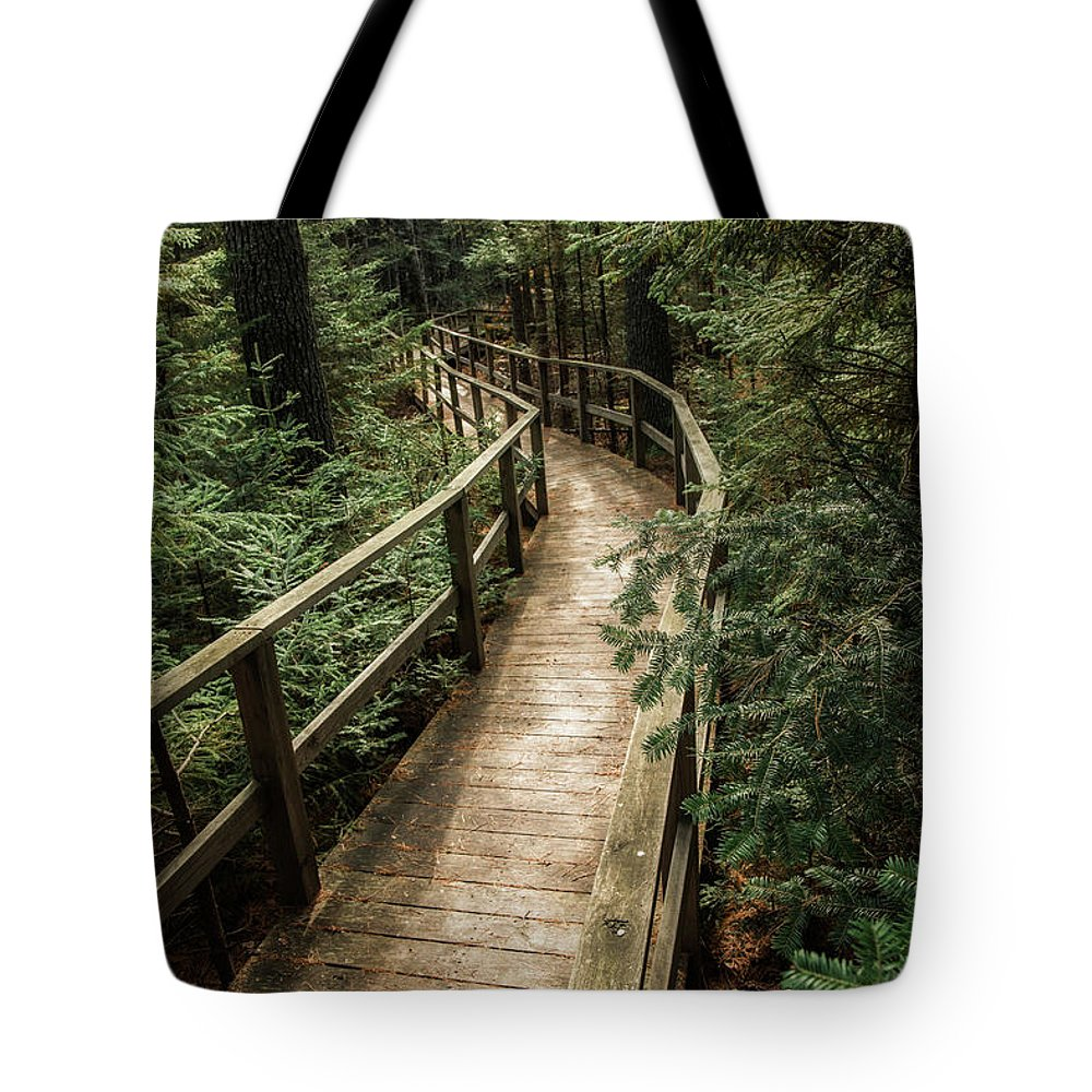 Pine Trees Tote Bag featuring the photograph Pine Trees by Susan Garver