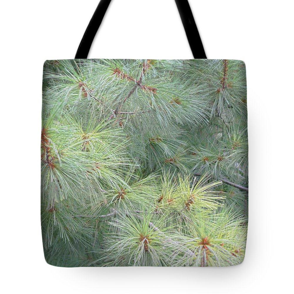 Pines Tote Bag featuring the photograph Pines by Rhonda Barrett