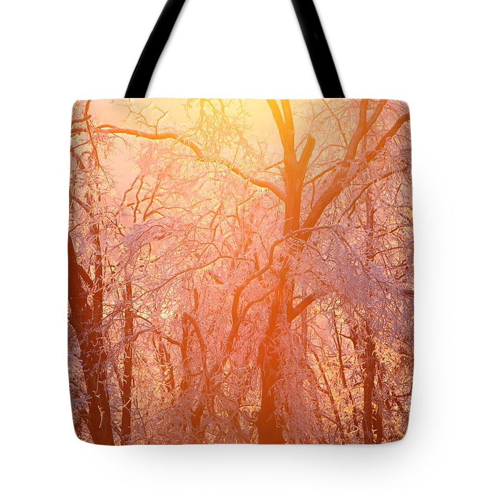 Pink Tote Bag featuring the photograph Pink And Gold by Nadine Rippelmeyer