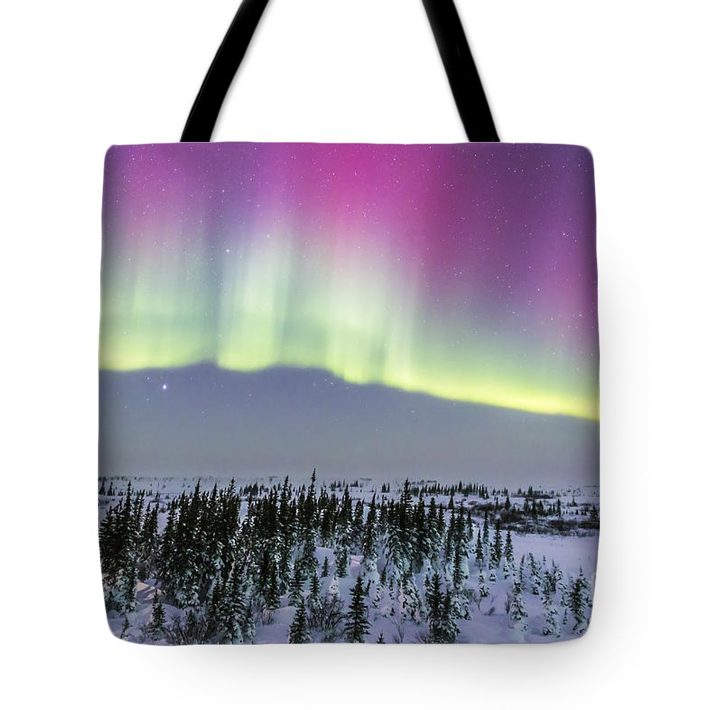 Aurora Tote Bag featuring the photograph Pink Aurora Over Boreal Forest by Alan Dyer