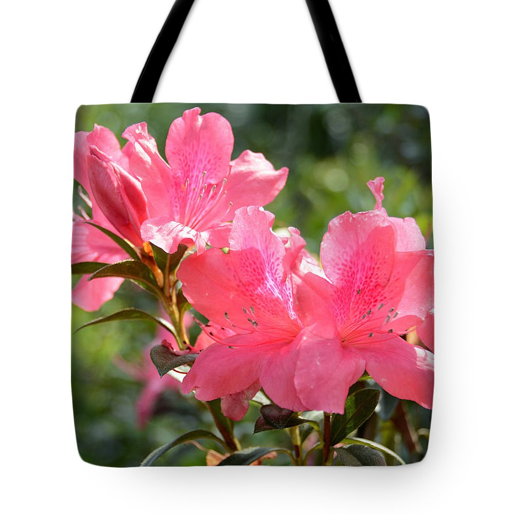 Pink Azaleas Tote Bag featuring the photograph Pink Azaleas by Ben Prepelka
