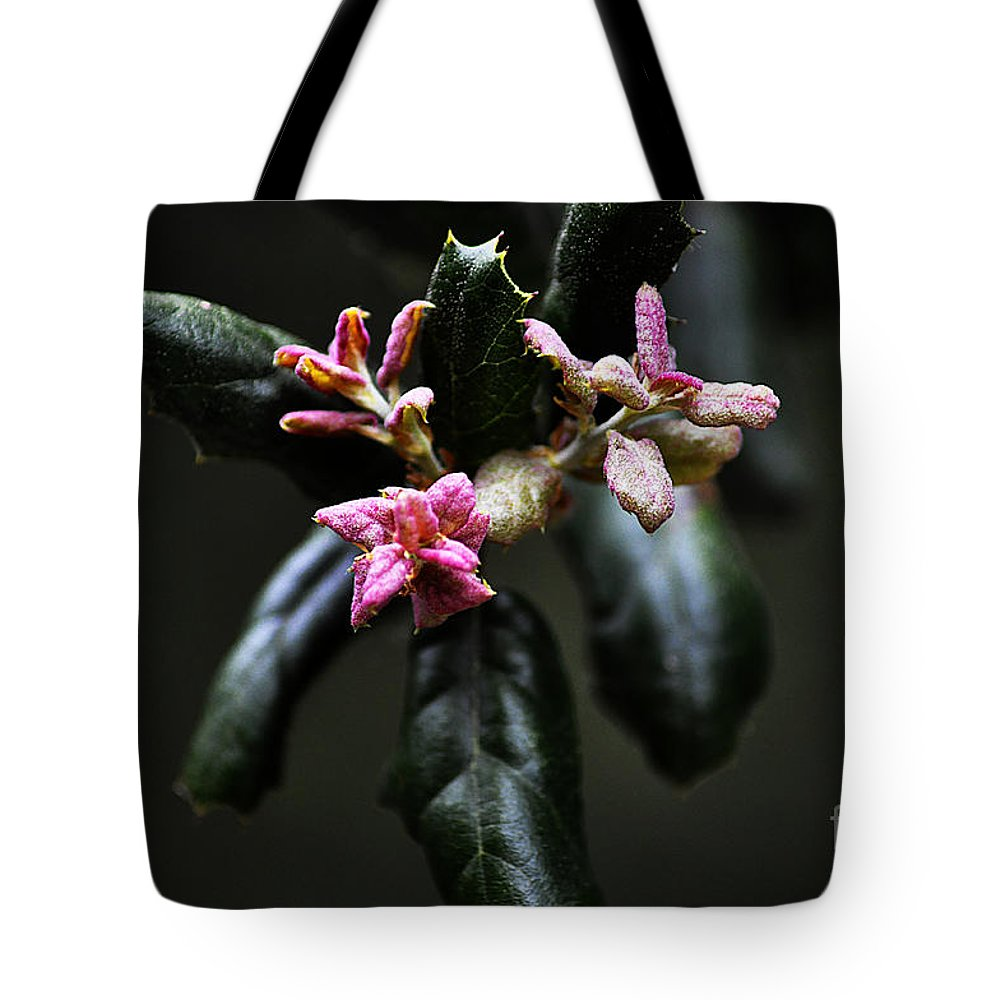 Clay Tote Bag featuring the photograph Pink Bud by Clayton Bruster