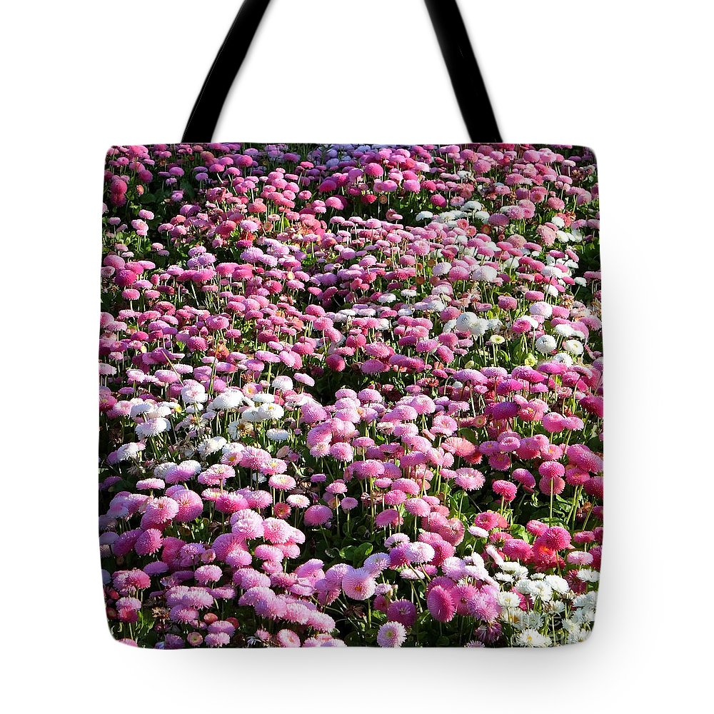 English Daisies Tote Bag featuring the photograph Pink Button Pom Flowers by Carol Groenen
