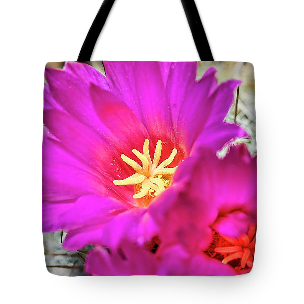 Cactus-thelocactus Macdowellii Tote Bag featuring the photograph Pink Cacti Flowers by Saija Lehtonen