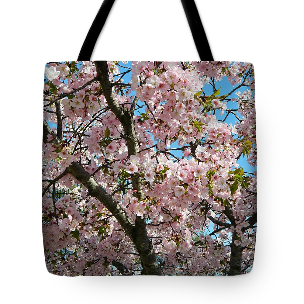 Pink Cherry Blossoms Tote Bag featuring the photograph Pink Cherry Blossoms by Emmy Vickers