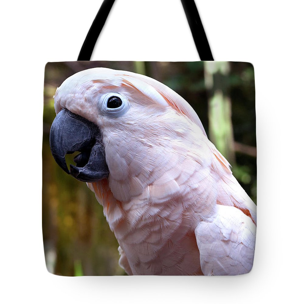 Pink Cockatoo Tote Bag featuring the photograph Pink Cockatoo by Haleh Mahbod