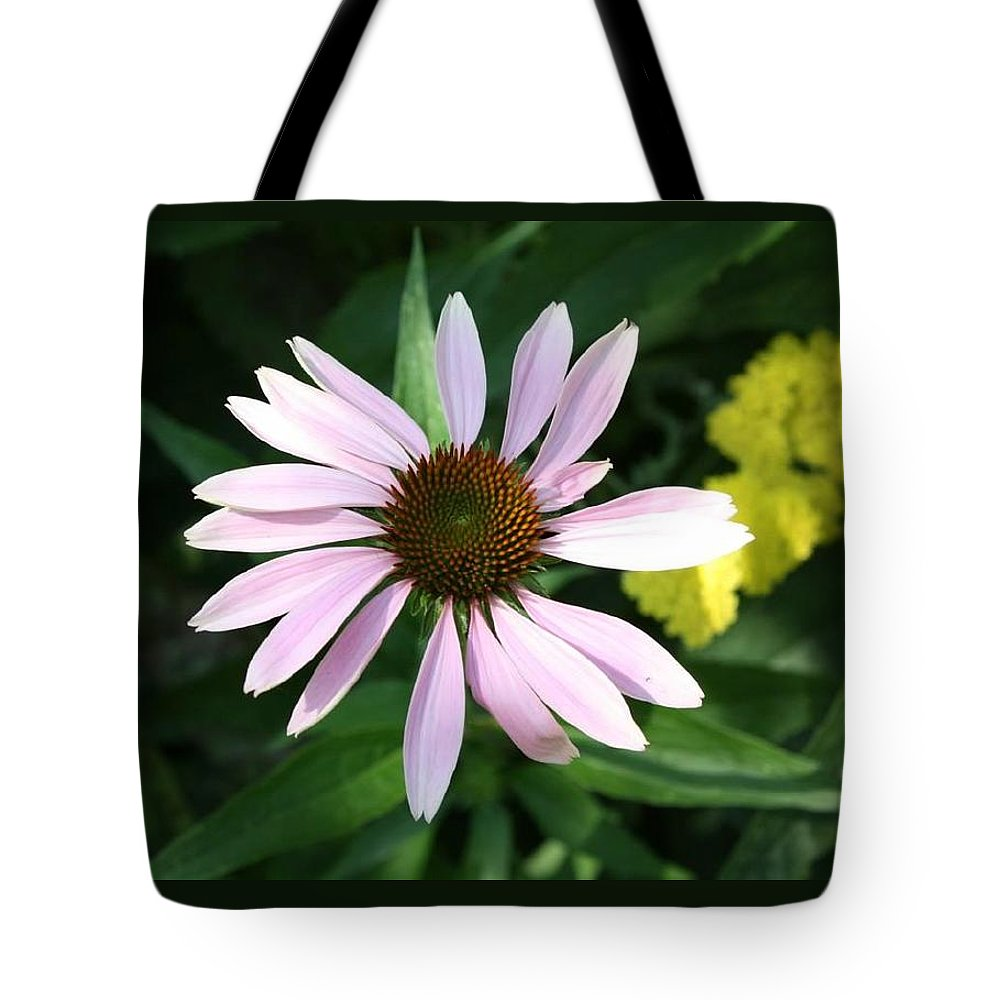 Pink Cone Flower Tote Bag featuring the photograph Pink Cone Flower 2 by Debra Sandstrom
