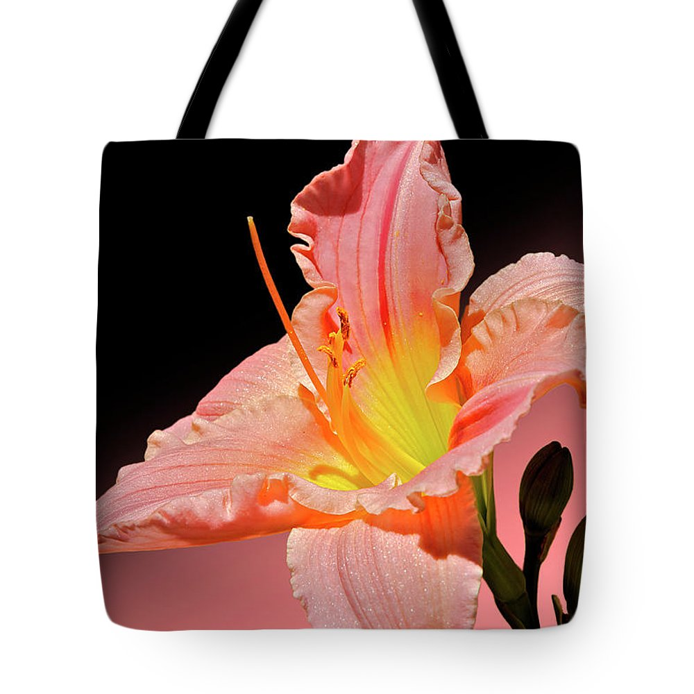 Daylily Tote Bag featuring the photograph Pink Daylily by Phyllis Denton