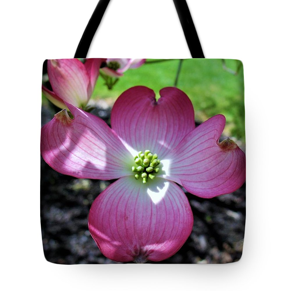 Pink Dogwood Tote Bag featuring the photograph Pink Dogwood by Patti Whitten