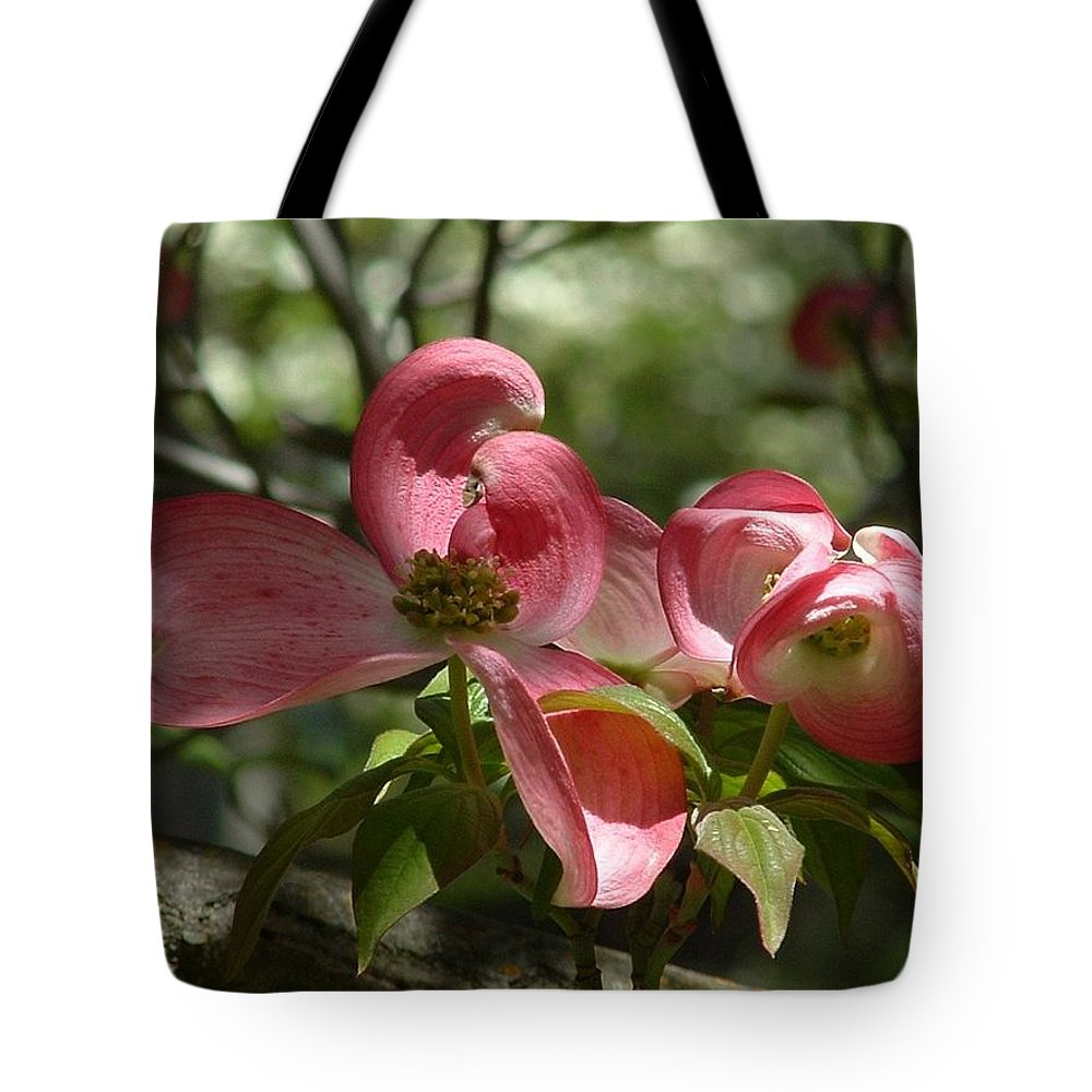 Tree Tote Bag featuring the photograph Pink Dogwoods by Lorna Hooper
