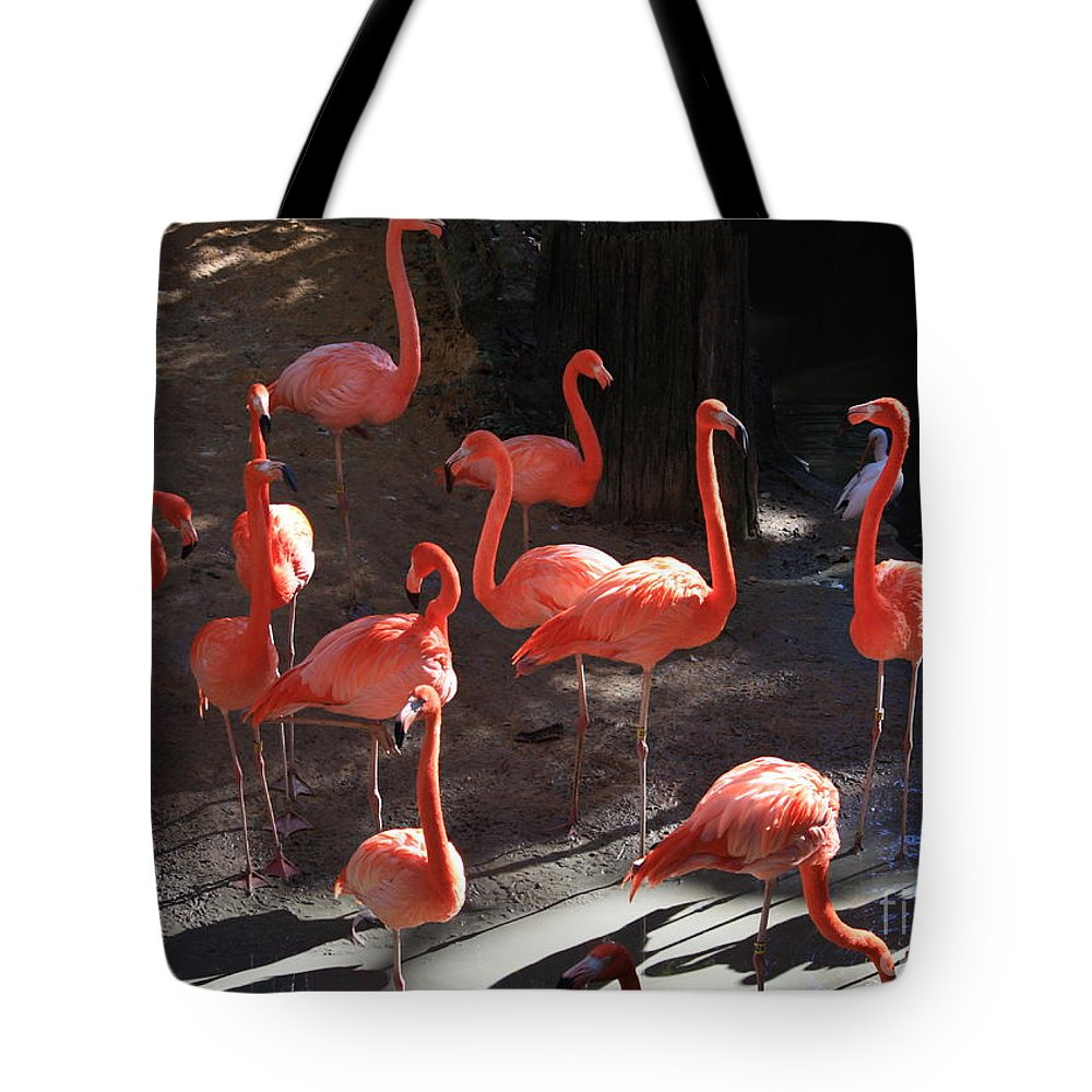 Pink Flamingos Tote Bag featuring the greeting card Pink Flamingos by Carol Groenen