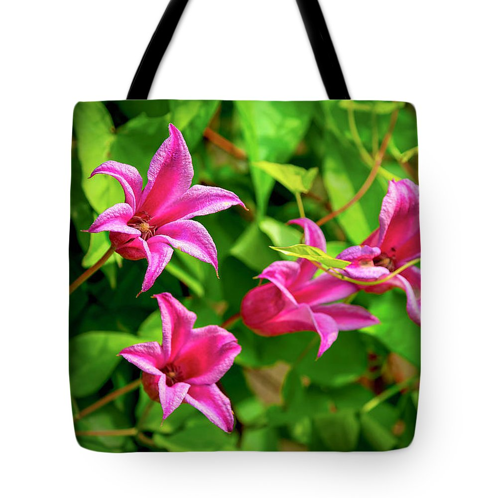 Annual Tote Bag featuring the photograph Pink Flowers by Joe Geraci