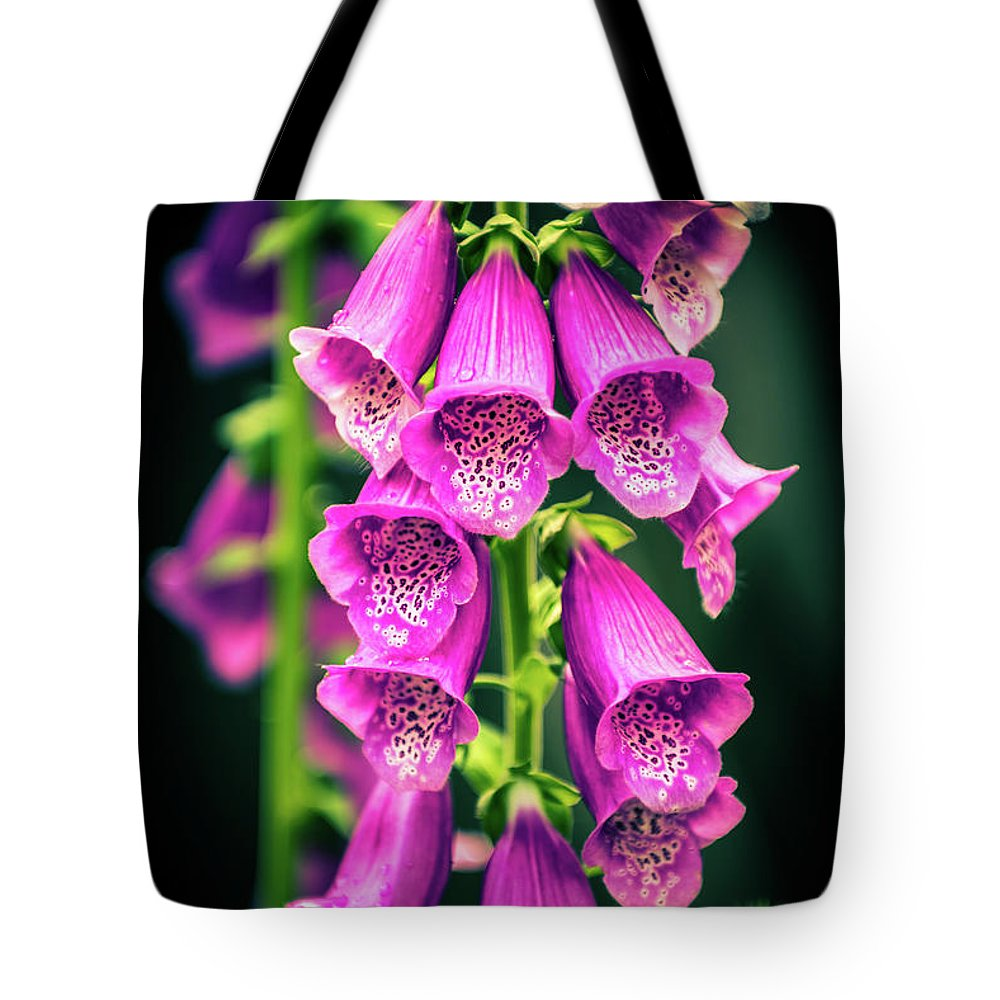 Foxglove Pink Flower Bloom Blossom Flora Garden Gardening Delicate Nature Tote Bag featuring the photograph Pink Foxglove by Zuska Madar