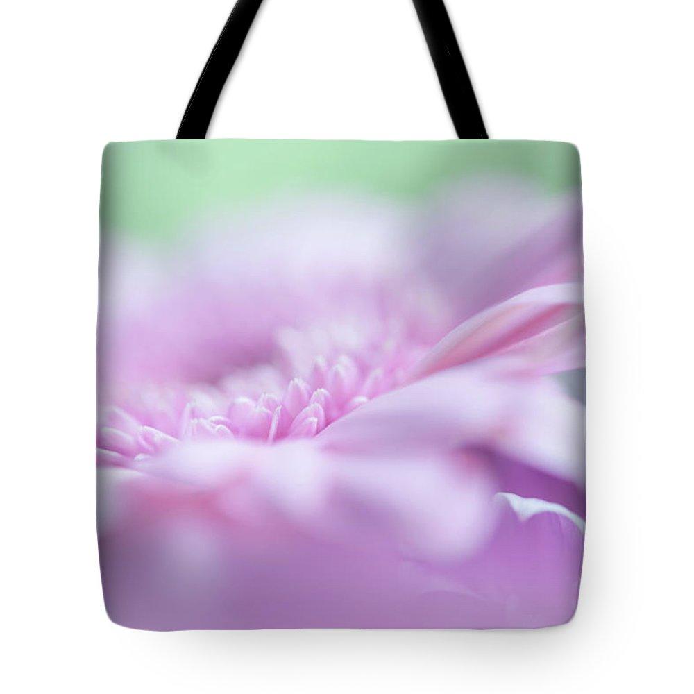 Jenny Rainbow Fine Art Photography Tote Bag featuring the photograph Pink Gerbera Macro 3. Pink Temptation by Jenny Rainbow
