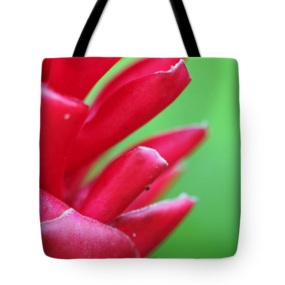 Ginger Tote Bag featuring the photograph Pink Ginger by Nadine Rippelmeyer