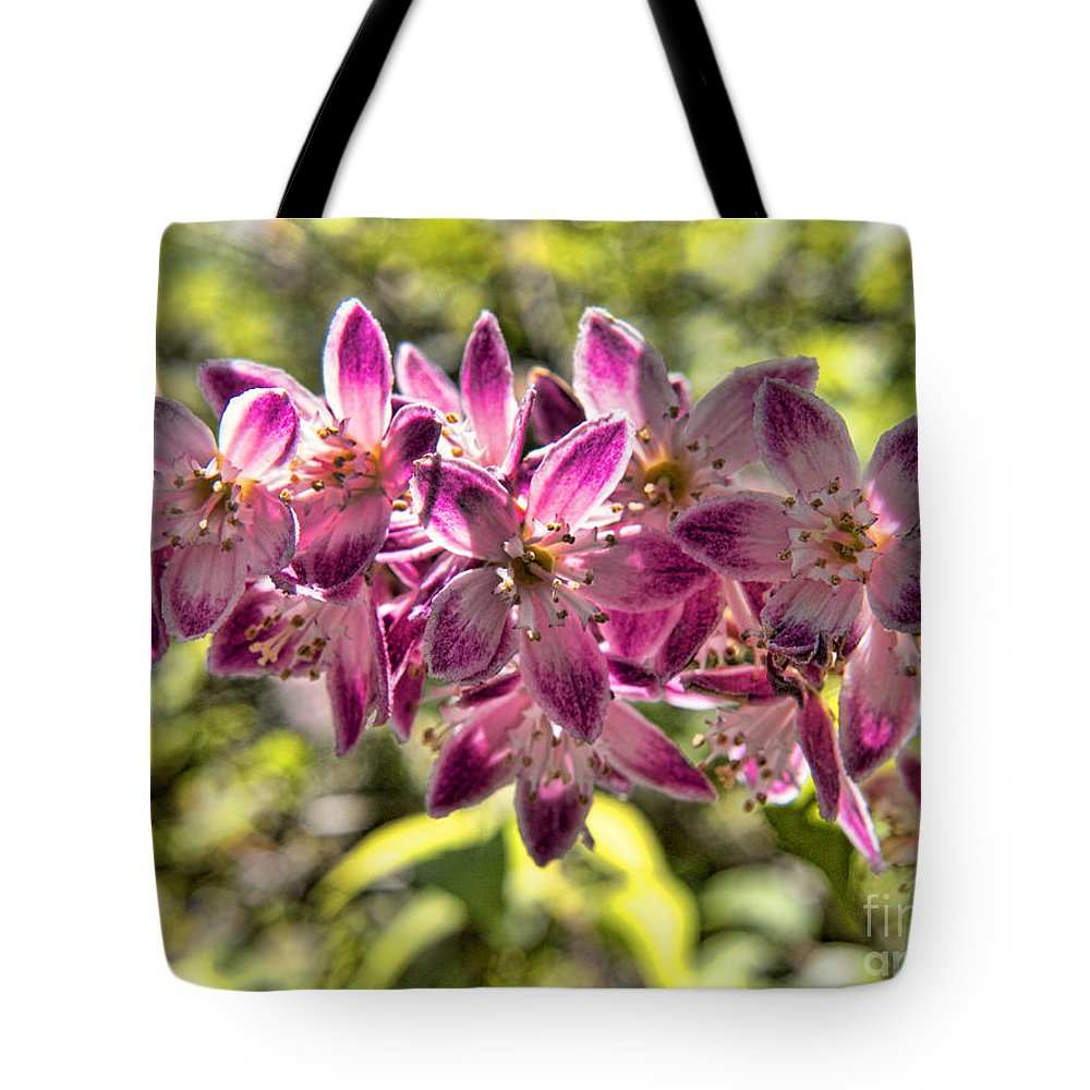 Biltmore Tote Bag featuring the photograph Pink Ladies In Spring Glory by Brenda Kean