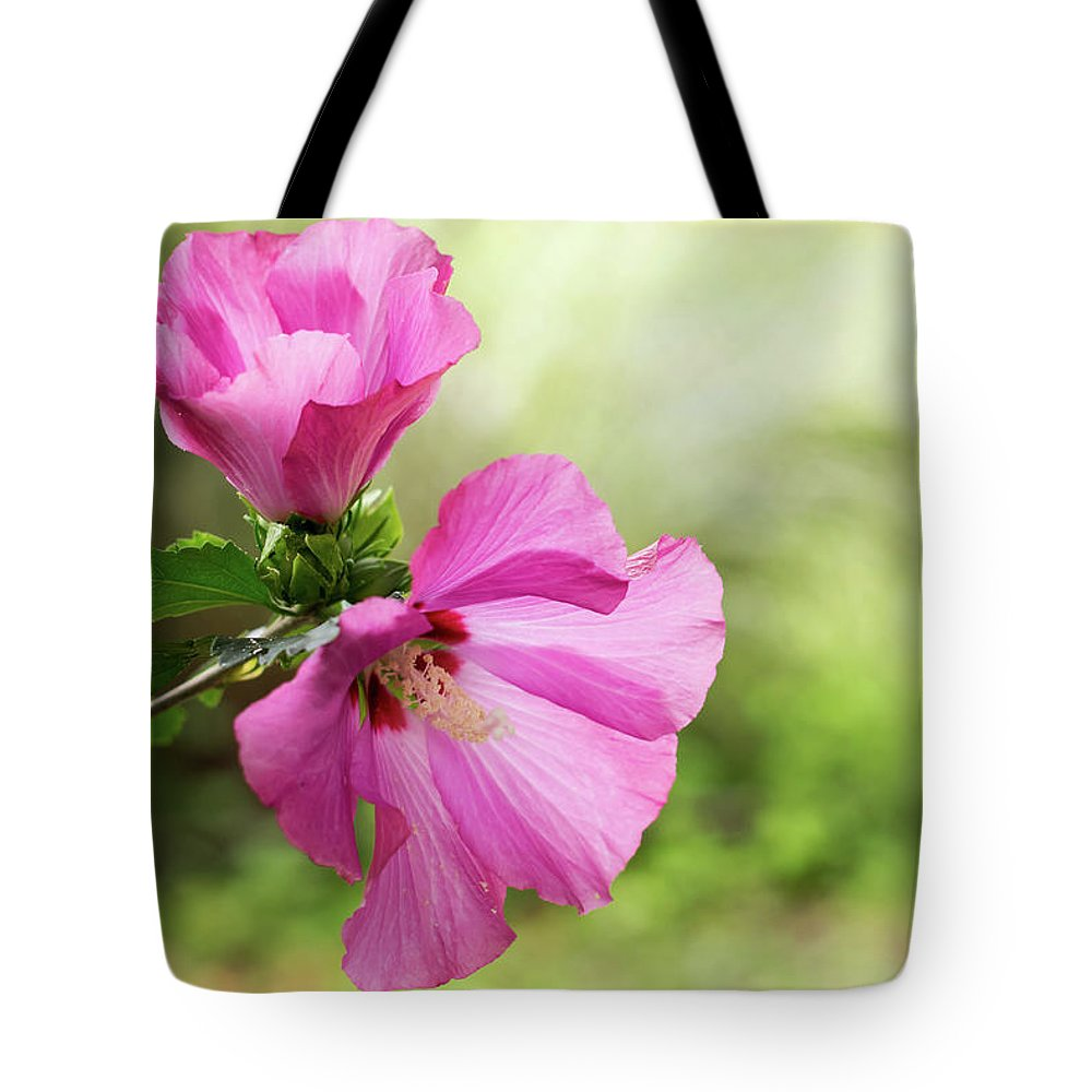 Terry D Photography Tote Bag featuring the photograph Pink Light Rose Of Sharon 2016 by Terry DeLuco