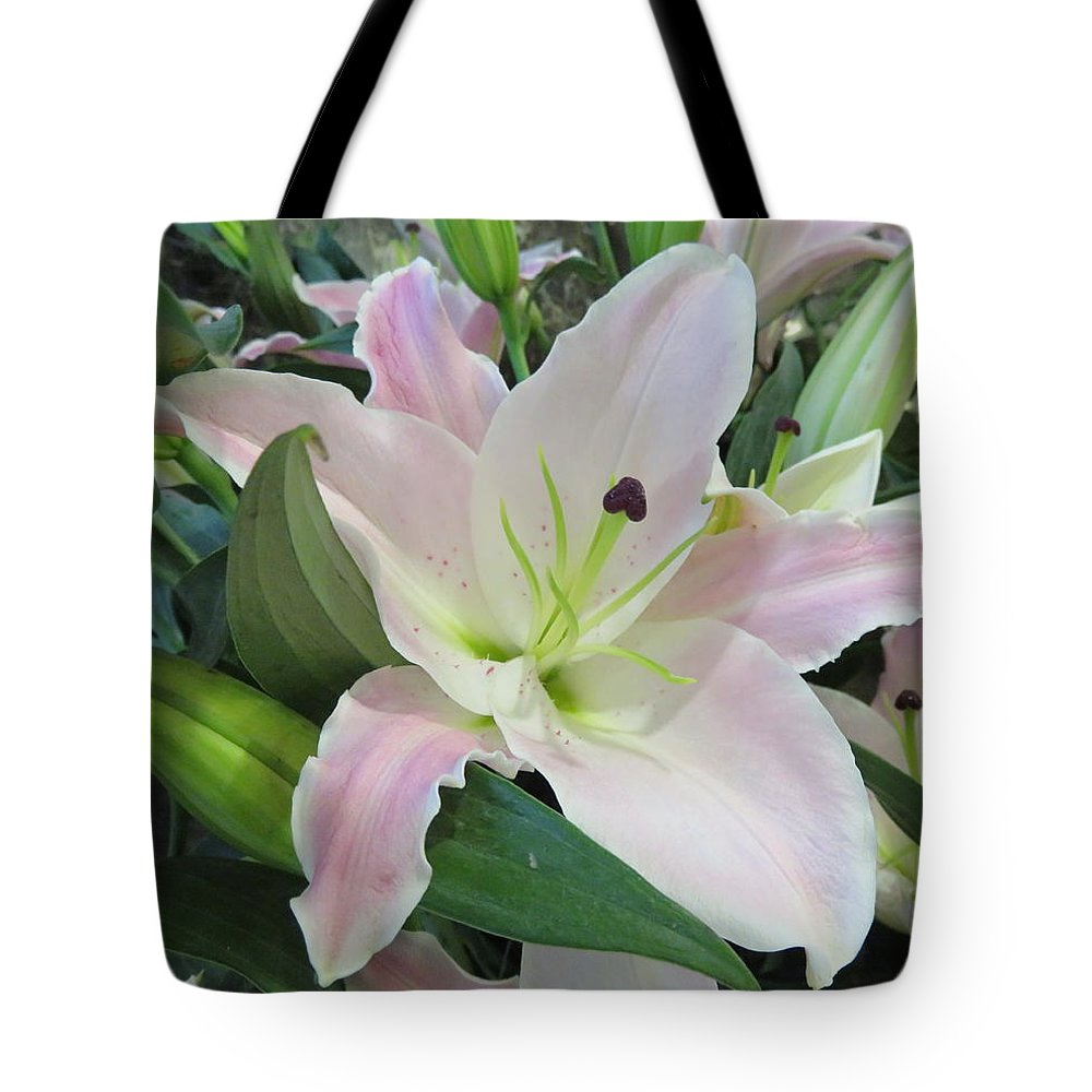 Pink Lily Tote Bag featuring the photograph Pink Lily by Cindy Kellogg