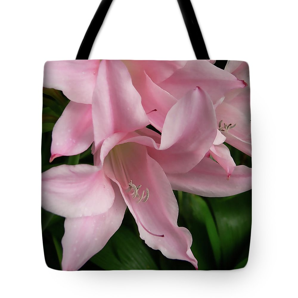 Lily Tote Bag featuring the photograph Pink Lily Flowers by Jennie Marie Schell