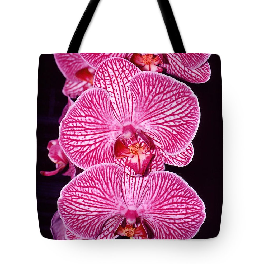 Photography Tote Bag featuring the photograph Pink Orchids by Susanne Van Hulst