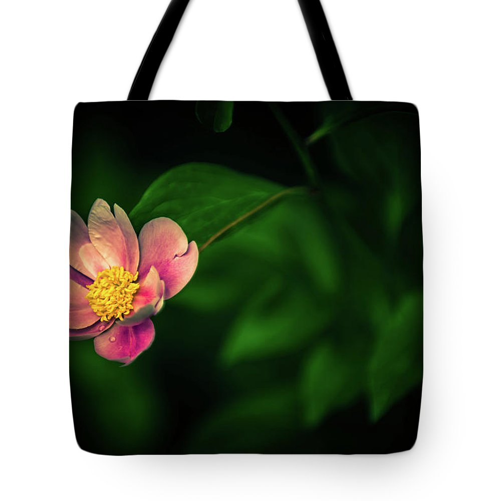Peony Pink Flower Bloom Blossom Flora Garden Gardening Delicate Nature Tote Bag featuring the photograph Pink Peony by Zuska Madar