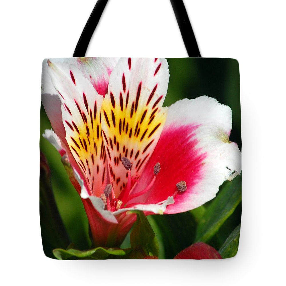 Peruvian Tote Bag featuring the photograph Pink Peruvian Lily 1 by Amy Fose