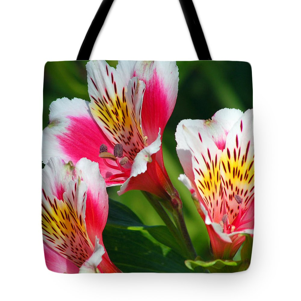 Peruvian Tote Bag featuring the photograph Pink Peruvian Lily 2 by Amy Fose