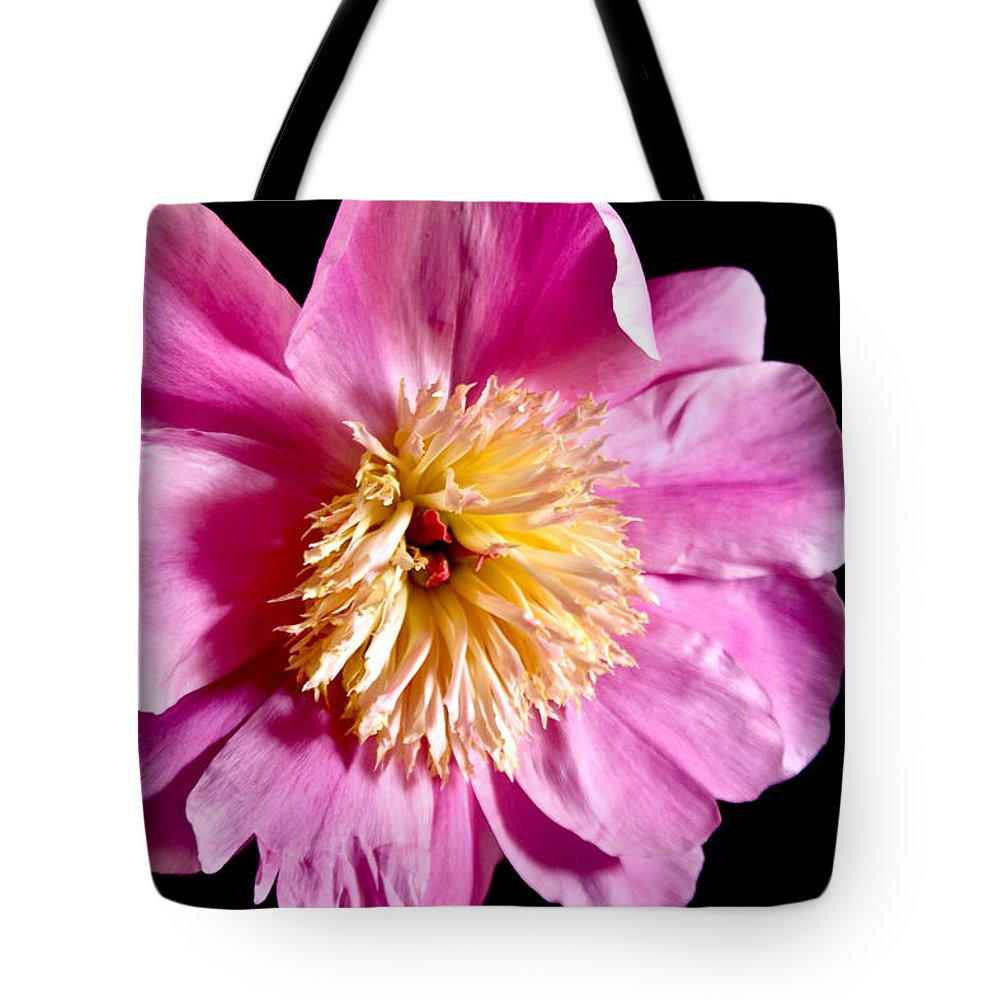 Flowers Tote Bag featuring the photograph Pink Petals by Robin Lynne Schwind