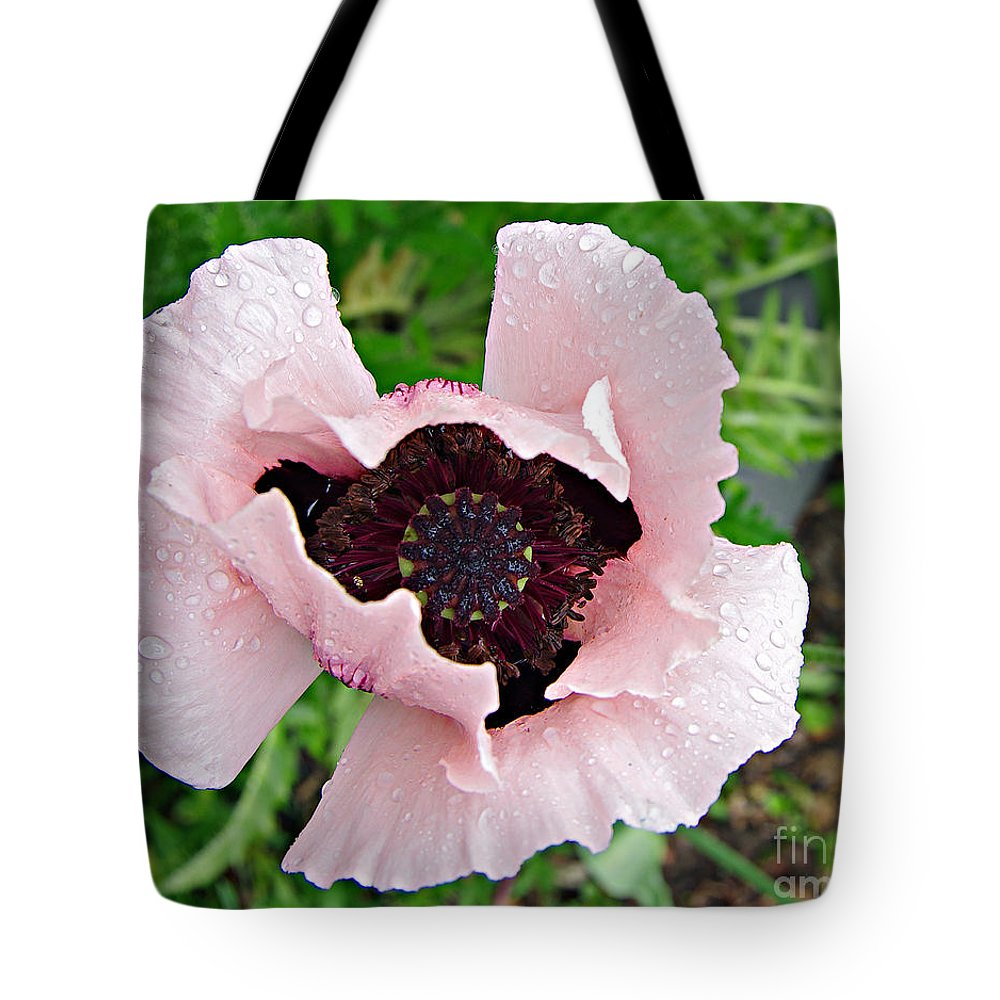 Flower Tote Bag featuring the photograph Pink Poppy by Tammy Ishmael - Eizman