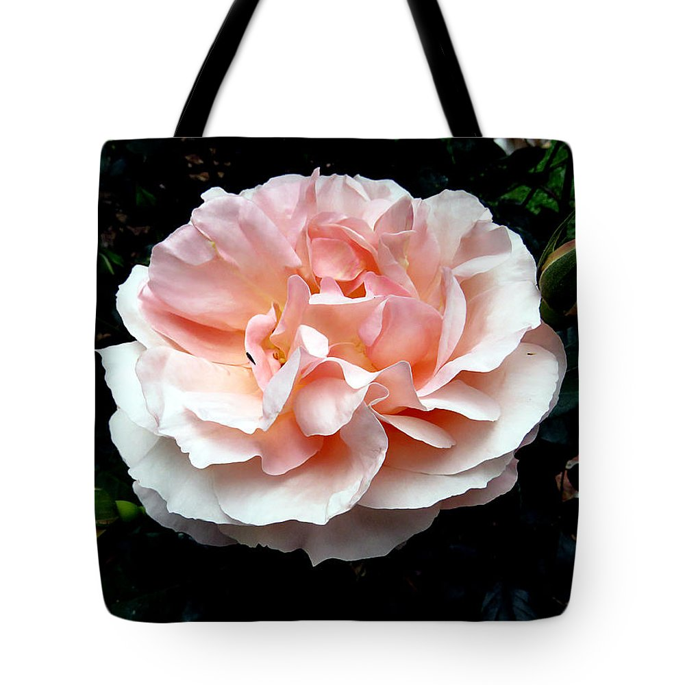 Rose Tote Bag featuring the photograph Pink Rose 4 by J M Farris Photography