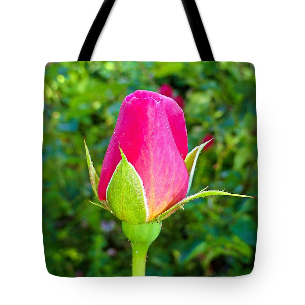 Pink Tote Bag featuring the photograph Pink Rose Bud by Robert Meyers-Lussier