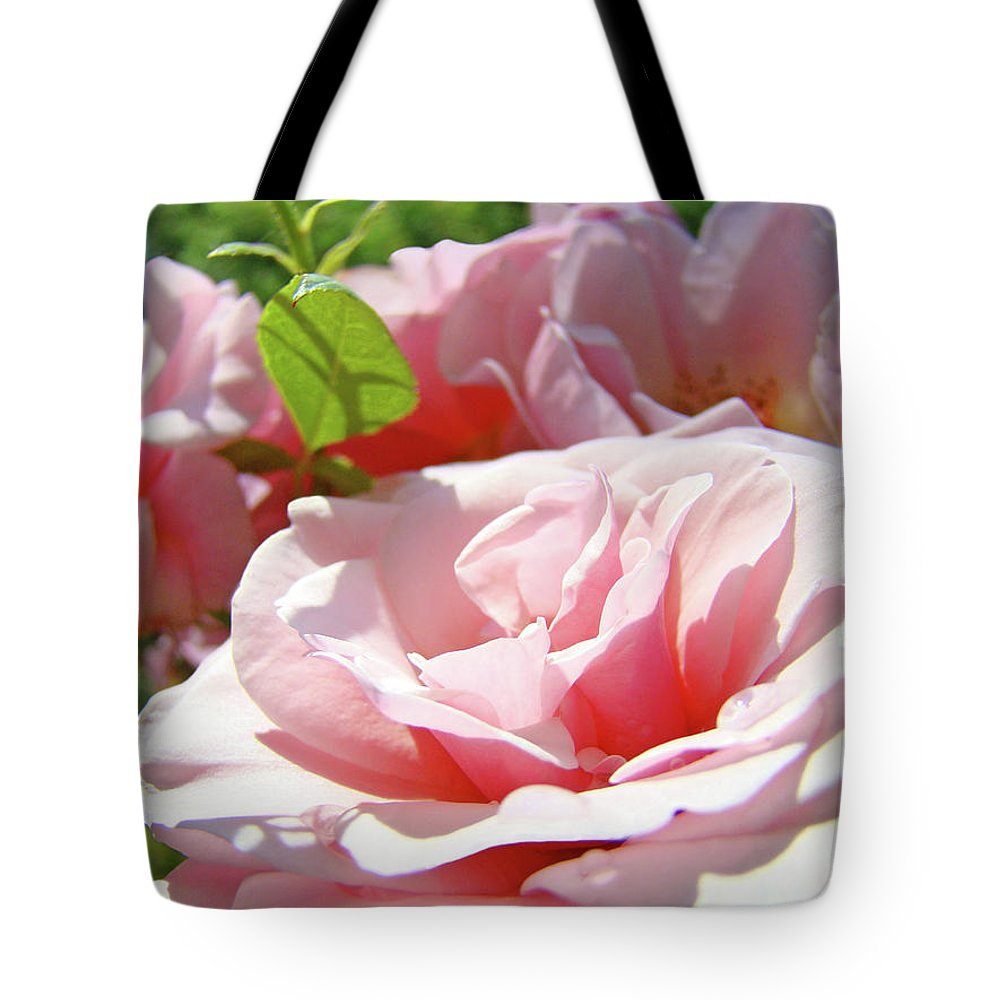 Rose Tote Bag featuring the photograph Pink Rose Flower Garden Art Prints Pastel Pink Roses Baslee Troutman by Baslee Troutman