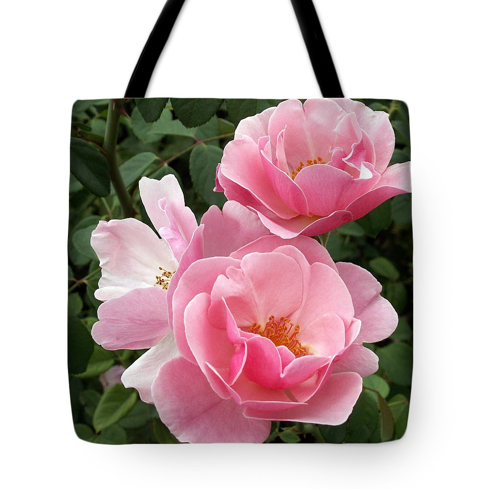 Pink Roses Tote Bag featuring the photograph Pink Roses 2 by Amy Fose