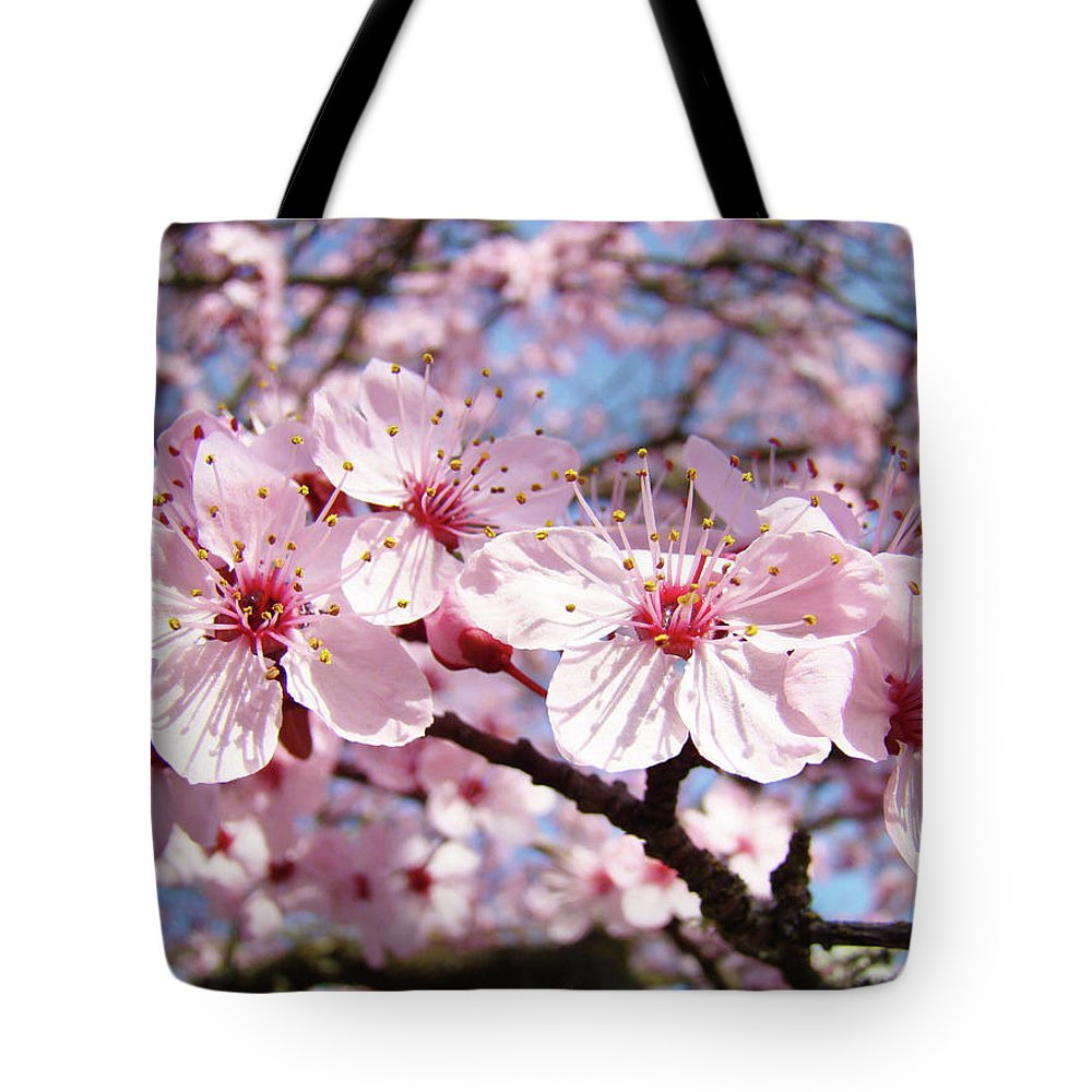 Nature Tote Bag featuring the photograph Pink Spring Blossoms Art Print Blue Sky Landscape Baslee Troutman by Baslee Troutman