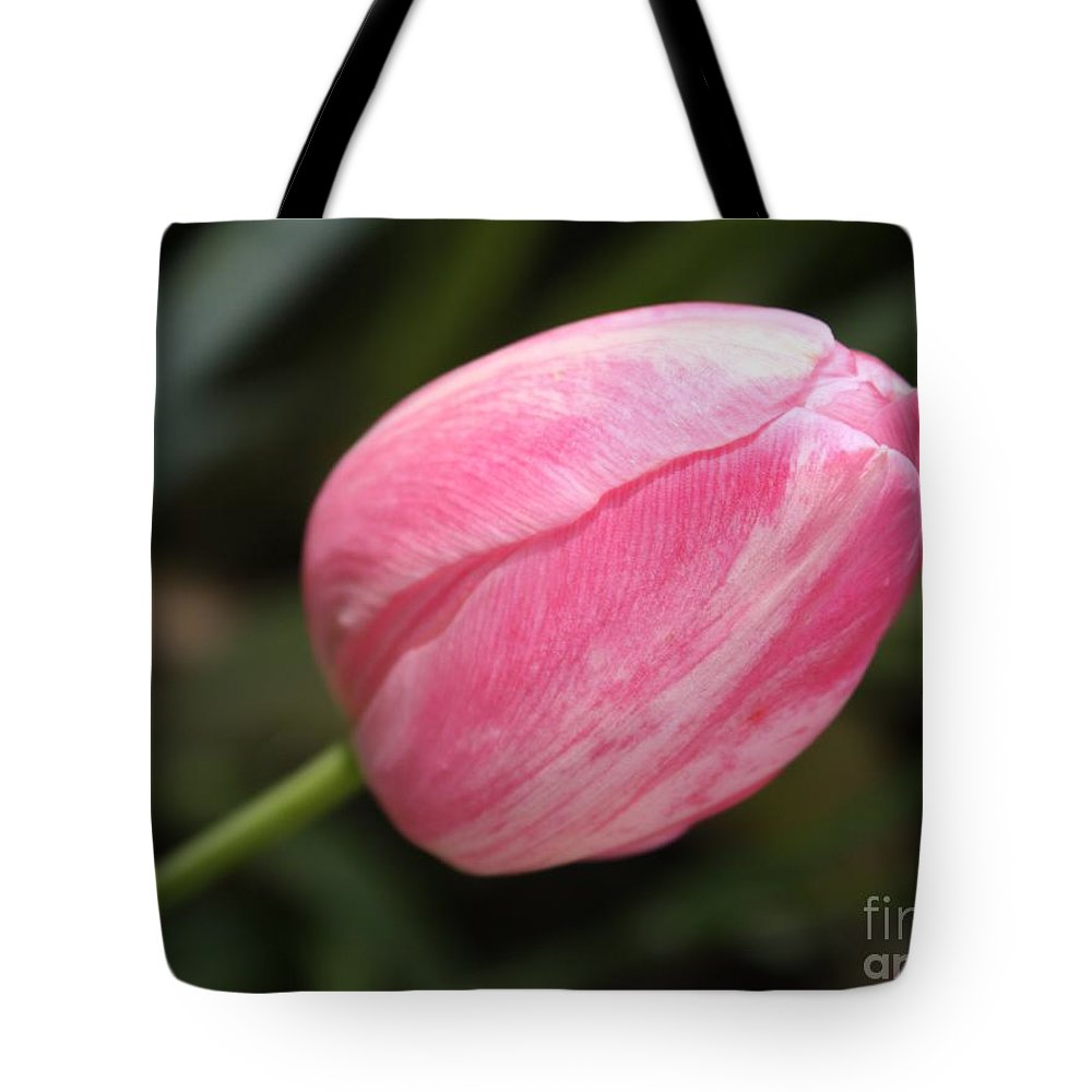 Tulip Tote Bag featuring the photograph Pink Tulip Closeup by Carol Groenen