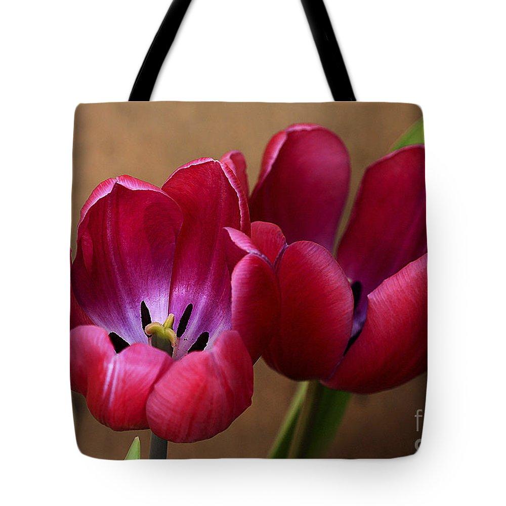 Pink Tote Bag featuring the photograph Pink Tulip Pair by Deborah Benoit